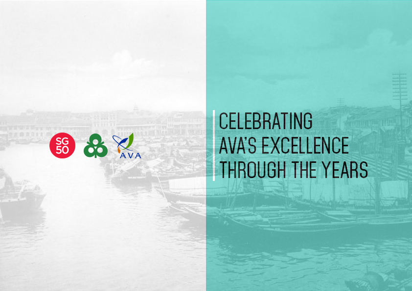 Celebrating AVA's Excellence Through the Years (AVA 15th Anniversary & SG50 Special Feature)