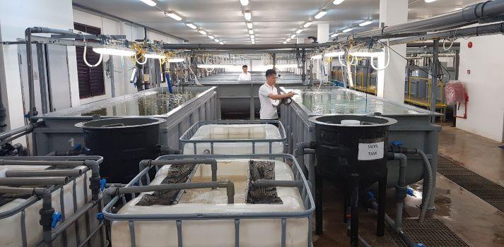 Marine Aquaculture Centre
