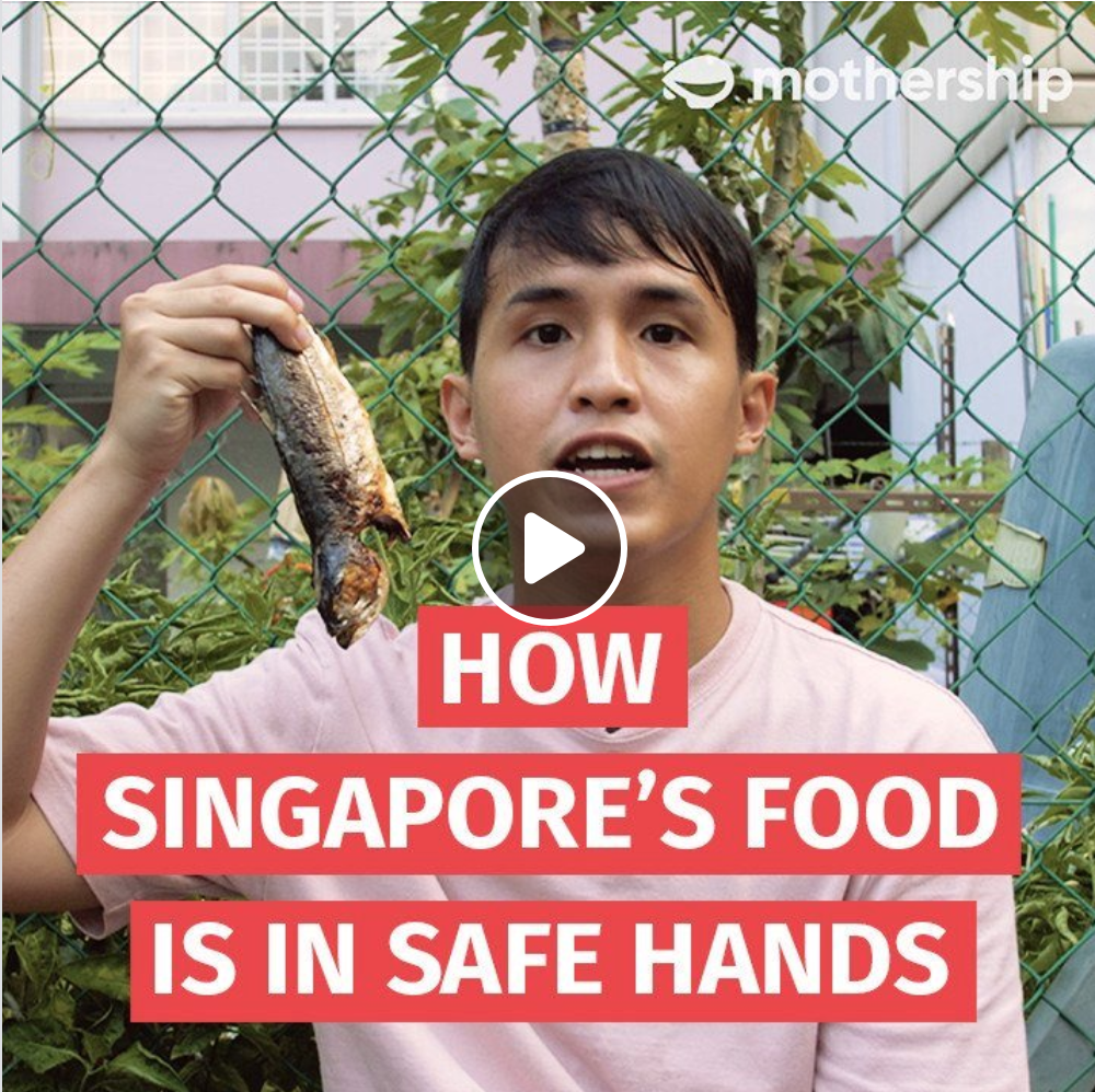 Here's why you can put your mind at ease when it comes to food – SFA has in place 3 strategies to ensure and secure a supply of safe food for Singapore.