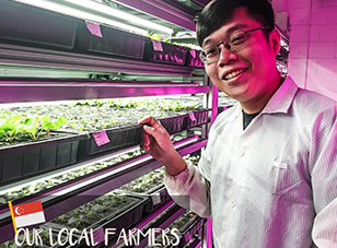 Our Local Farmers Series: Lee Yuan Hao, Vegeponics