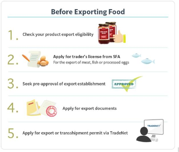 Infographic on Steps to Export Food